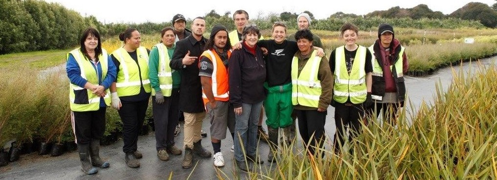 An image of a team of trainees enjoy identifying native plants and their medicinal properties at Miranda nursery.