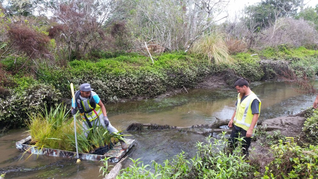 An image of a team working on a stream mitigation programme.